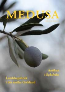 Medusa nr 3, 2013