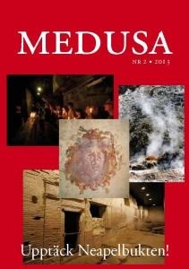 Medusa nr 2, 2013